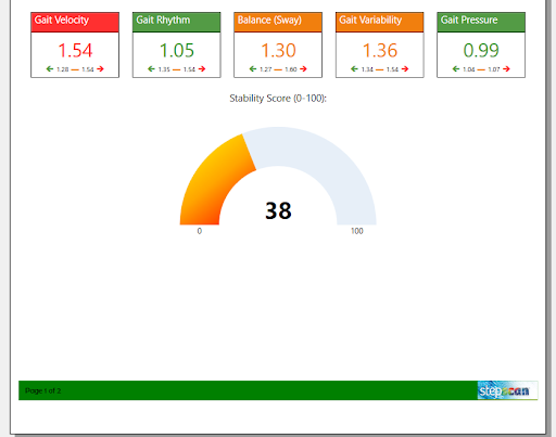 Screenshot of Stability Score on page one of a Fall Risk Summary